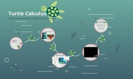 Turtle Calculus