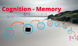 Cognition - Memory Systems