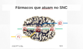 Fármacos que atuam no SNC