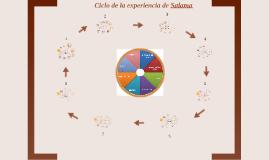CICLO DE LA EXPERIENCIA y TPG SALAMA