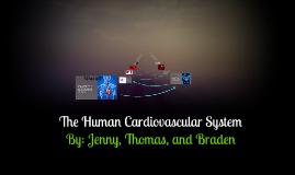 Copy of Cardiovascular System