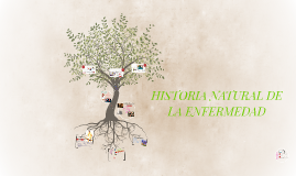 Copy of HISTORIA NATURAL DE LA ENFERMEDAD