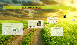 Copy of                                   BIOCOMBUSTIBLES
