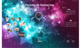 Periodo de Gestación