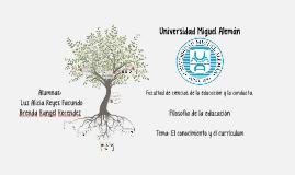 Universidad Miguel Aleman