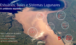 Copy of Estuários, Baías e Sistemas Lagunares
