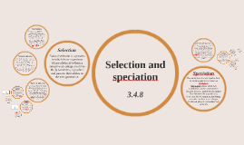3.4.8 Selection and speciation