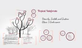 Copy of Tropical Rainforest Prezi