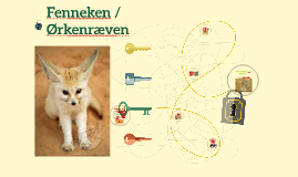 Fenneken /