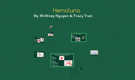 Hematuria-Urinary/Reproductive-BN-TT