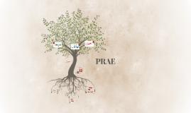 PRAE: Raices Tibabuyes