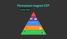 Permanent magnet CKP