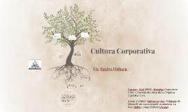 Identidad e Imagen Corporativa - Cultura Corporativa