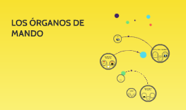 LOS ÓRGANOS DE MANDO