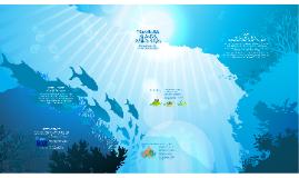 Four Seasons Marine Discovery Centre Prezi
