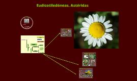 2016. Eudicotiledóneas. Astéridas (T27-28) para Biotecnología
