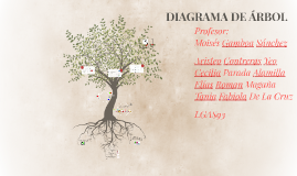 Copy of DIAGRAMA DE ÁRBOL