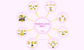 Resumen Proyecto Laicos Nivel 0
