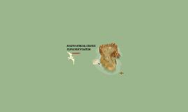 Copy of MAGNA-SIRGAS, GEOIDE ELIPSOIDE Y DATUM