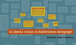 Az uborka vírusos és baktériumos betegségie