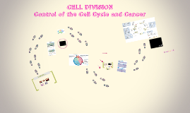 Chapter 5: Cell Division B CANCER
