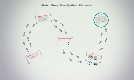 Model: Group Investigation- Perimeter