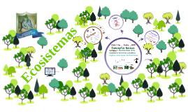 11º Ecosistemas