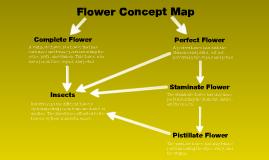 Flower Concept Map.Tanner Porter On Prezi