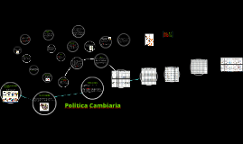 Copy of Politica Cambiaria