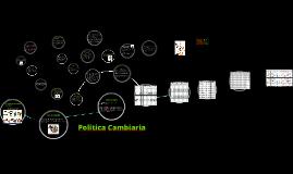 Copy of Politica Cambiaria