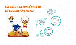 ESTRUCTURA ORGANICA DE LA EDUCACION FISICA