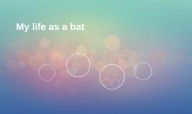 My life as a bat
