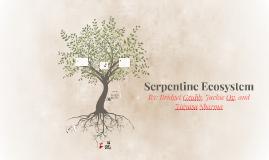 Serpentine Ecosystem
