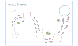 Aynur Huseyn's CV