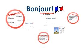 Diversity in France