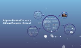 Regimen Político Electoral y Tribunal Supremo Electoral
