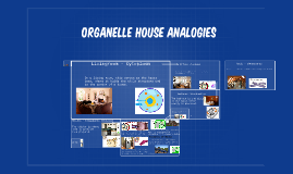 Organelle House Analogies