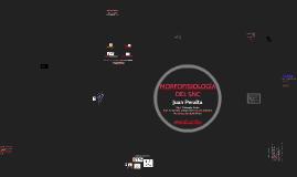 Intro Morfofisiología