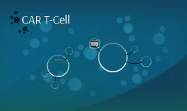 CAR T-Cell