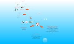 Copy of Ecological footprints