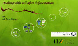 Deforestation and its impact to soil