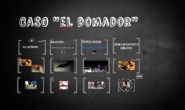 """CASO """"EL DOMADOR"""""""
