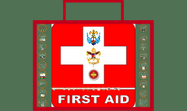 Copy of The Goals of First Aid