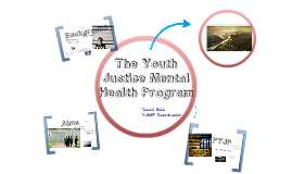 The Youth Justice Mental Health Program