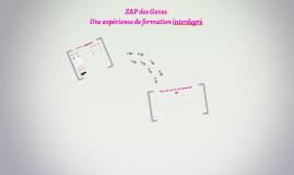 ZAP des Gaves