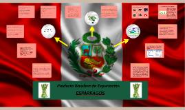 Producto bandera de expotacion esparragos