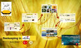 beekeeper_turkey