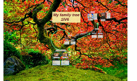 My family tree 1IV6