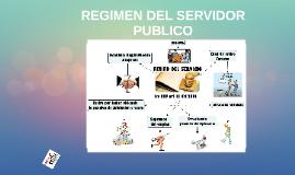REGIMEN DEL SERVIDOR  PUBLICO