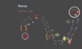Copy of Prezentarea personajelor din romanul Maitreyi